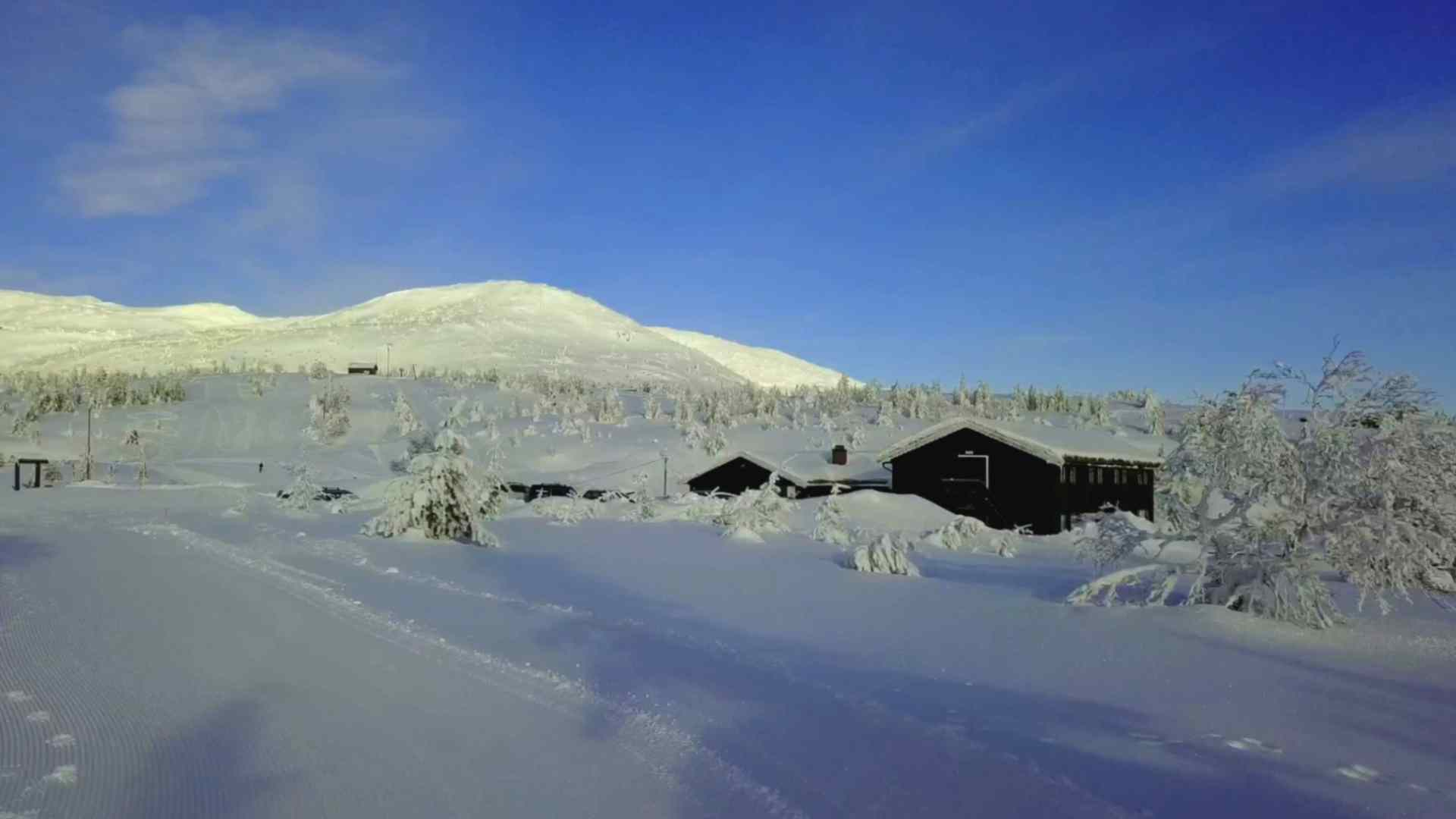 Lifjellstua