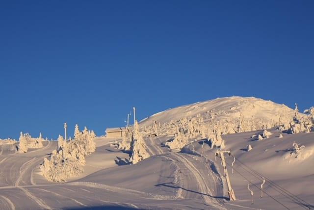Vinterbilde Lifjell